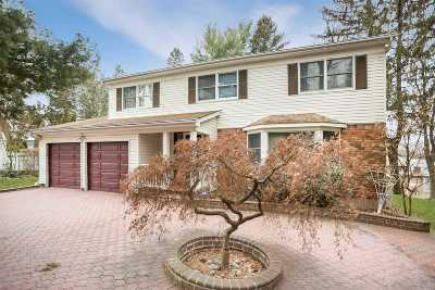 Syosset Single Family Home For Sale: 10 Alpine Dr