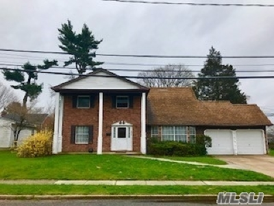 Westbury Single Family Home For Sale: 496 Livingston St