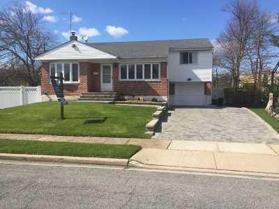 Westbury Single Family Home For Sale: 29 Hillary Ln