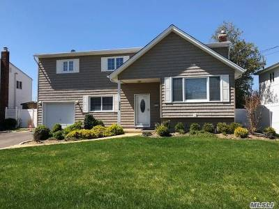Merrick Single Family Home For Sale: 2954 Wynsum Ave