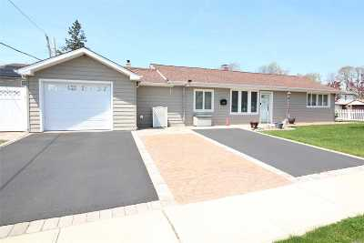 East Meadow Single Family Home For Sale: 378 Warwick Rd