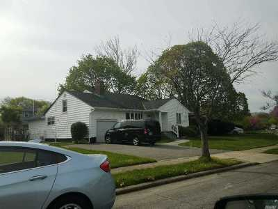 Syosset Single Family Home For Sale: 22 Greenvale Ln