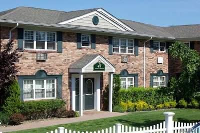 Deer Park Rental For Rent: 41 Lucille Ln #7B