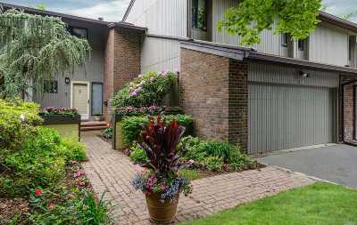 Jericho Condo/Townhouse For Sale: 164 High Pond Drive