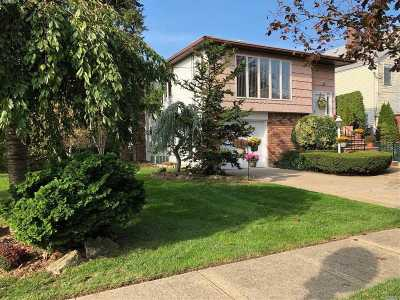 Merrick Single Family Home For Sale: 1825 Gregory Ave