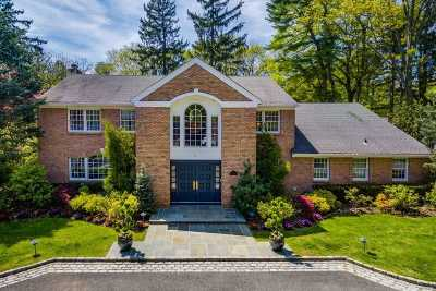 Old Westbury Single Family Home For Sale: 6 Meadow Rd