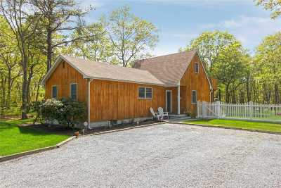 Manorville Single Family Home For Sale: 30 N Trainor Ave