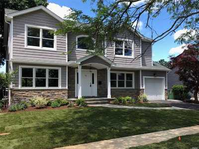 Westbury Single Family Home For Sale: 91 Briarcliff Rd