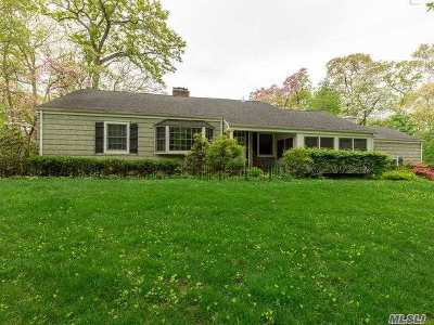 Smithtown Single Family Home For Sale: 18 Woodland Dr
