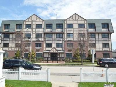 Rockville Centre Condo/Townhouse For Sale: 55 Clinton Ave #107