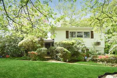 Roslyn Single Family Home For Sale: 21 Fernwood Ln