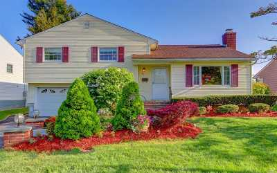Hicksville Single Family Home For Sale: 49 Glenbrook Rd