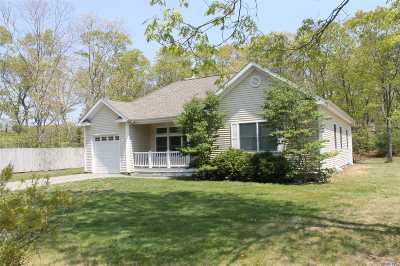 Hampton Bays Single Family Home For Sale: 14 Daniels Road