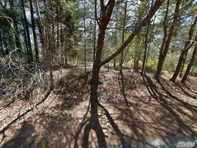 Middle Island Residential Lots & Land For Sale: 568 & 1120 Middle Country Rd