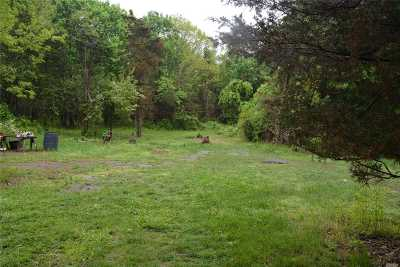 Mattituck Residential Lots & Land For Sale: 19000 Main Rd