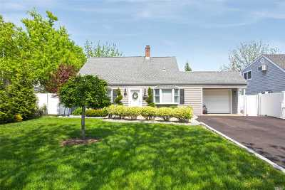Levittown Single Family Home For Sale: 175 Loring Rd