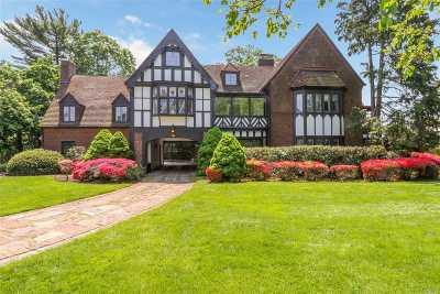 Garden City Single Family Home For Sale: 266 Stewart Ave