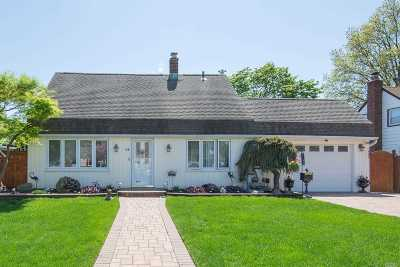 Levittown Single Family Home For Sale: 12 Cherrytree Ln