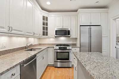 Westbury Condo/Townhouse For Sale: 717 Roosevelt Way