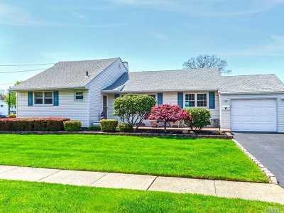 N. Babylon Single Family Home For Sale: 17 Cheryl Ln