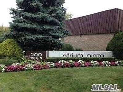 Nassau County Condo/Townhouse For Sale: 200 Hilton Ave #27