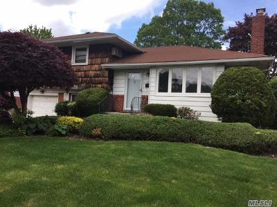 Nassau County Single Family Home For Sale: 52 Eileen Ave