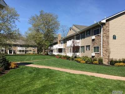 Hauppauge Rental For Rent: 425 Lincoln Blvd #1-1W