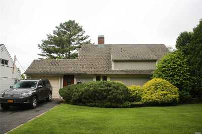 Hicksville Single Family Home For Sale: 42 Boxwood Ln