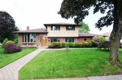 Jericho Single Family Home For Sale: 305 Whitebirch Ln
