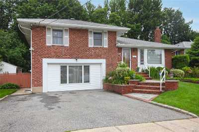 Syosset Single Family Home For Sale: 241 Martin Dr