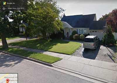 Westbury Single Family Home For Sale: 32 Mindy Ln