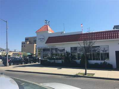 Nassau County Commercial For Sale: 278 W Park Ave