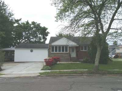 Syosset Single Family Home For Sale: 4 Ava Dr