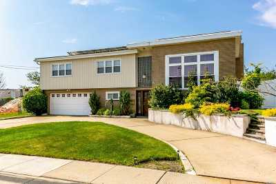Island Park Single Family Home For Sale: 204 California Pl