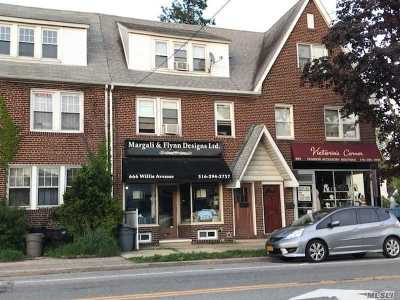 Nassau County Multi Family Home For Sale: 666 Willis Ave