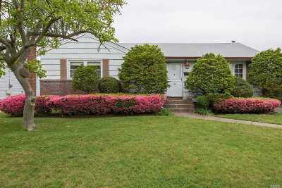 Hicksville Single Family Home For Sale: 128 10th St