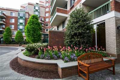 Garden City Condo/Townhouse For Sale: 100 Hilton Ave #501