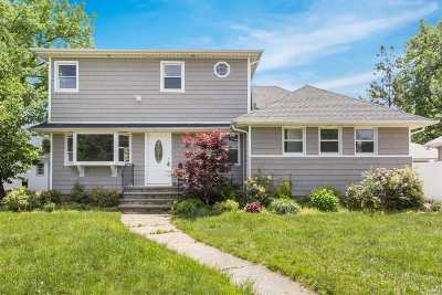 Wantagh Single Family Home For Sale: 995 McLean Ave