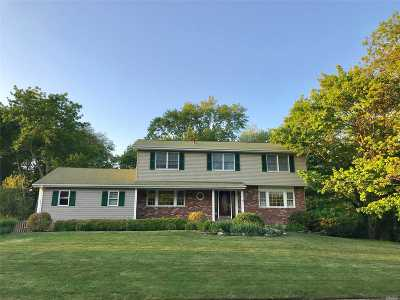 Smithtown Single Family Home For Sale: 17 Terrace Ln