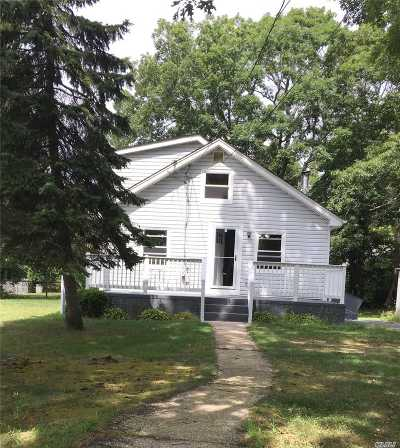 Patchogue Single Family Home For Sale: 41 Green Ave