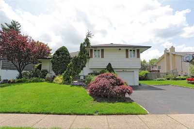 Jericho Single Family Home For Sale: 178 Maytime Dr