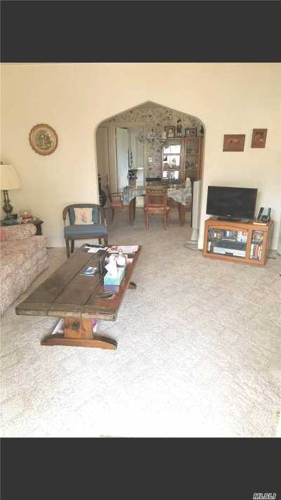 Baldwin Single Family Home For Sale: 583 Stowe Ave