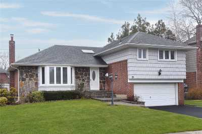 Syosset Single Family Home For Sale: 22 Mesa Rd