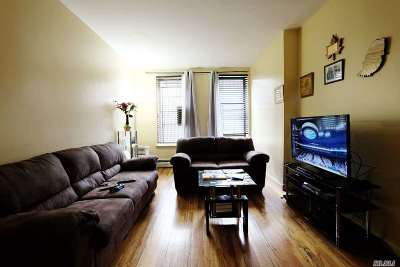 Brooklyn Condo/Townhouse For Sale: 246 Sumpter St #1B