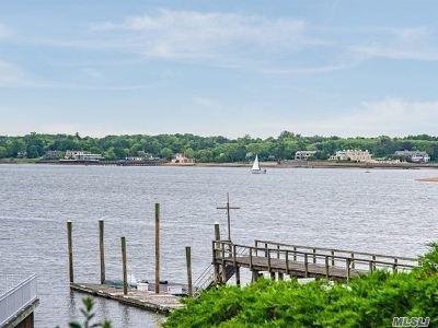 Port Washington Condo/Townhouse For Sale: 18 Sands Ct