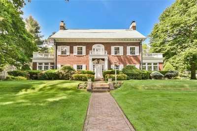 Garden City Single Family Home For Sale: 113 Stratford Ave