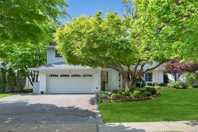 Jericho Single Family Home For Sale: 15 Middle Ln
