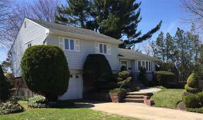 Syosset Single Family Home For Sale: 20 Colony Ln