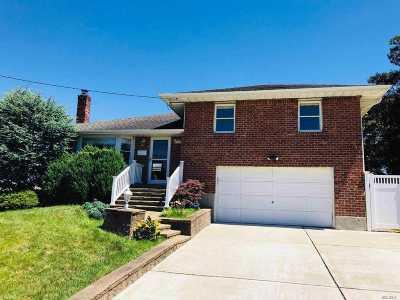 Jericho Single Family Home For Sale: 321 Ellen Pl