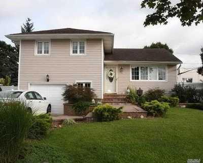 Hicksville Single Family Home For Sale: 25 Primrose Ave
